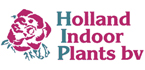 Holland Indoor Plants